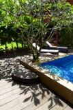 Lado tropical soleado de la piscina Imágenes de archivo libres de regalías