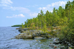 ladoga石湖的岸 免版税库存图片