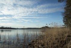 Ladoga jezioro w Karelia Zdjęcie Royalty Free