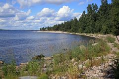 Ladoga kust Arkivfoto