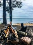 ladoga lake Att förbluffa kopplar av och naturen! fotografering för bildbyråer