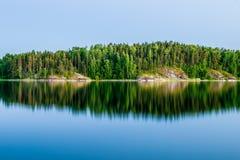 Ladoga lake. Forest on island on Ladoga lake Stock Images