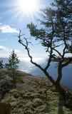 Ladoga lake. Karelia Stock Photography
