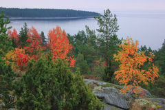 Ladoga lake, Karelia, Russia Stock Image