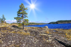Ladoga lake, Karelia, Russia Royalty Free Stock Image