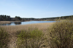 Ladoga lake in Karelia. Ladoga lake in spring Karelia Royalty Free Stock Image