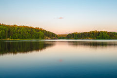 Ladoga lake. Quiet forest on skerry on Ladoga lake Stock Image