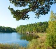 Ladoga lake under sunlight Stock Images