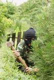 Ladrão no jardim Fotos de Stock Royalty Free