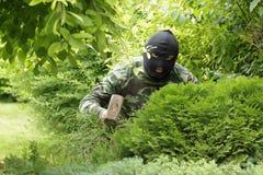 Ladrão no jardim Imagens de Stock