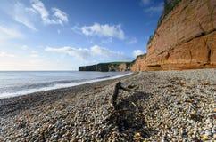 Ladram Bay in Devon. Red sandstone cliffs and shingle beach at Ladram Bay near Sidmouth on the Jurassic coast in Devon Royalty Free Stock Image