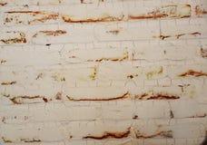 Ladrillo de la pared fotos de archivo libres de regalías