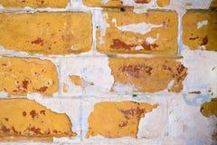 Ladrillos anaranjados viejos en un abedul blanco viejo Foto de archivo libre de regalías
