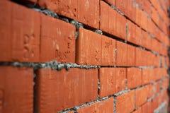 Ladrillos con el cemento en perspectiva Imagenes de archivo