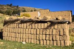 Ladrillos de Adobe secados en el lago Titicaca, Bolivia Fotos de archivo libres de regalías