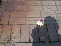 ladrillos y flores conmemorativos Imagen de archivo