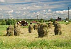 Ladscape finlandés del país con los haystackes de la vendimia Fotografía de archivo libre de regalías