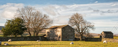 Ladugård för sten för panoramalandskap traditionell i höstlig countrysid Arkivbild