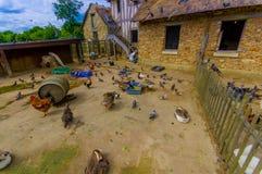 Ladugård i Hameau de la Reine, drottningens Hamlet Royaltyfri Bild