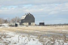 Ladugård i snöig fält arkivfoton
