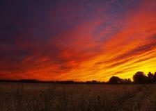 Ladugård med fält för en dramatisk solnedgång och havre Arkivbild