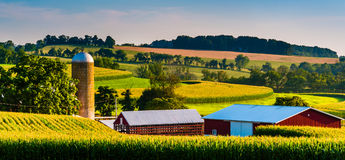 Ladugård och silo på en lantgård i lantliga York County, Pennsylvania arkivbilder