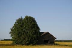 Ladugård på fältet Arkivbild