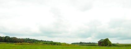 Ladugård som är bevuxen med vinrankan i landsskördfält arkivbild