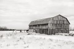 Ladugård svartvita Quebec - Royaltyfri Fotografi