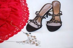 Lady accessories Royalty Free Stock Images
