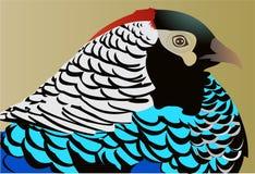 Lady amherst pheasant. Beutiful bird lady amherst pheasant royalty free illustration