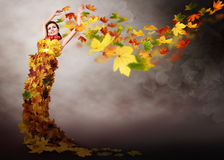Lady autumn Royalty Free Stock Photos