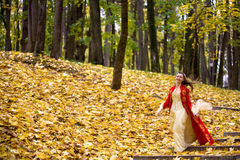 Lady in autumn forest. Lady in medieval red dress in the autumn forest stock photography