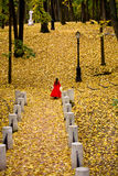 Lady in autumn forest. Lady in medieval red dress in the autumn forest Royalty Free Stock Photography