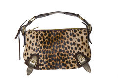 Lady bag Stock Photography