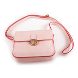 Lady bag Stock Images