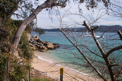 Lady Bay Beach Sydney royalty free stock images