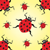 Lady beetle notepad Royalty Free Stock Photography