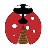 Lady-bird or ladybug isolated on light white background. Red insect. Vector illustration Royalty Free Stock Image