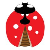 Lady-bird or ladybug isolated on light white background. Red insect Stock Photo