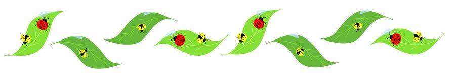 Lady birds on leaves heading Royalty Free Stock Image