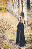 Lady in a blue dress in the forest Royalty Free Stock Image