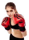 Lady boxer with gloves Royalty Free Stock Photography
