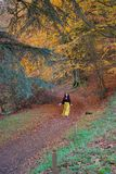 Lady in bright yellow trousers dancing in an autumnal autumn / fall forest; yellow, orange, red, green trees royalty free stock photo