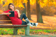 Lady browsing tablet in woodland. Royalty Free Stock Image