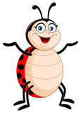 Lady bug. Illustration of a cheerful lady bug vector illustration