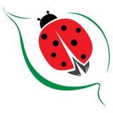 Lady bug. Simple symbol of lady bug on leaf royalty free illustration