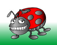 Lady bug royalty free illustration