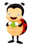 Lady bug cartoon Royalty Free Stock Photos