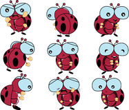 Lady bug emotion. Include happy sad angry sorrow vector Royalty Free Stock Images